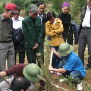 A study tour to learn how to grow medicinal
